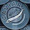 Caviar L, petrol