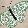 Farfalla, col. 03