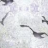 Tapeten: Flight, sand