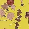 Tapeten: Botanicals, gold yellow