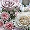 Tapeten: Floraison