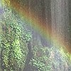 Tapeten: Rainbow