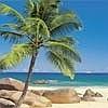 Tapeten: Seychellen klein
