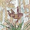 Tapeten: The Jungle design, col. 8