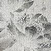 Tapeten: Plumier, white