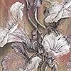 Tapeten: Bloomin