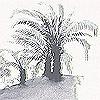 Tapeten: Gardens, col.01