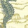 Tapeten: Seahorse, col.02