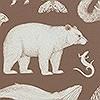 Tapeten: Animals - Toffee