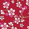 Tapeten: cherry blossom, col.07