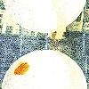 Tapeten: Cocooning, col. 04