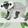 Tapeten: Monkey bars, col. 1