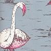 Tapeten: Flamingos, col. 44