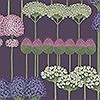 Tapeten: Allium, col. 6