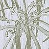 Tapeten: Palm, col.40