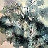 Tapeten: Pinus