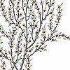 Tapeten: Cherrytree