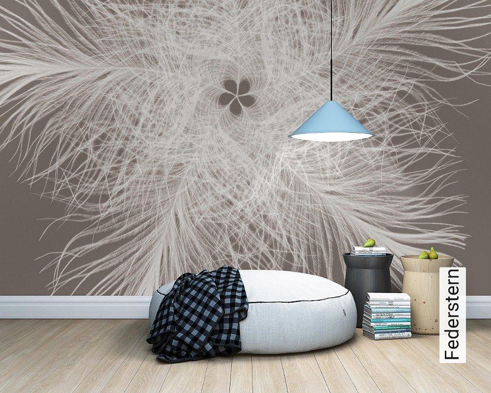 fototapete federstern die tapetenagentur. Black Bedroom Furniture Sets. Home Design Ideas