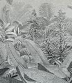 AMAZONIA-BLACK-AND-WHITE-Bäume-Landschaft-Blätter-Florale-Muster-FotoTapeten-Schwarz-und-Weiß