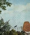 AVIS-Mural,-col.-1-Landschaft-Vögel-FotoTapeten-Multicolor