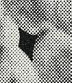 Akash,-col.85-Stein-Moderne-Muster-Textil-&-NaturTapeten-Anthrazit-Weiß