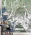 Alley-Graphite-Bäume-FotoTapeten-Grün-Grau-Weiß
