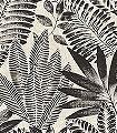 Aloes,-col.-06-Blätter-Florale-Muster-Schwarz-Creme