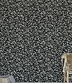 Amorina,-col.03-Blätter-Florale-Muster-Schwarz-und-Weiß