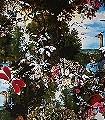 Animal-Eve-Garden-Blumen-Tiere-Blätter-Fauna-Florale-Muster-Multicolor