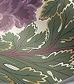 Aurora,-col.-1-Blumen-Blätter-Florale-Muster-Lila-Gelb-Creme