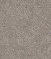 Aurora,-col.03-Punkte-Moderne-Muster-Silber-Braun
