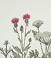 BEAUTY-ALICE-Blumen-Blätter-Florale-Muster-FotoTapeten-Multicolor