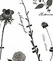 Botanicals,-anthracite-Blumen-Blätter-Florale-Muster-Anthrazit-Schwarz-Weiß
