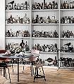 Cabinet-of-Curious-Flaschen-Gegenstände-3D-Tapeten-tromp-l'oeil-FotoTapeten-Grau-Braun-Schwarz-Weiß