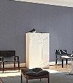 Crackle,-col.50-Reisslack-Moderne-Muster-Silber-Anthrazit