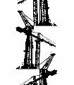 Crane,-col.-08-Kräne-Moderne-Muster-Schwarz-Weiß