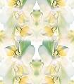 Flower,-col.1-Blumen-Blätter-Moderne-Muster-Multicolor