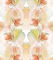 Flower,-col.2-Blumen-Blätter-Kunst-Moderne-Muster-Multicolor