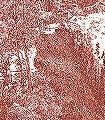 Fredric,-col.01-Bäume-Toile-de-Jouy-Berge-Rot-Perlmutt