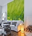Green-1-Blumen-Landschaft-Gras-Florale-Muster-FotoTapeten-Rot-Grün