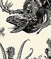 Iguana,-black-Tiere-Moderne-Muster-Schwarz-Creme