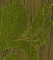 Iris,-col.-9-Blumen-Textil-&-NaturTapeten-Grün
