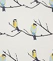 Juneberry-Vögel-Äste-Fauna