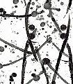 Leo-Noir-Graphisch-Moderne-Muster-Grafische-Muster-Schwarz-und-Weiß