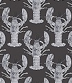 Lobster,-dark-grey-Tiere-Fauna-Grau-Anthrazit