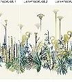 Lush-Amazon,-col.-01-Blumen-Tiere-Landschaft-Blätter-Vögel-Fauna-Florale-Muster-Moderne-Muster-FotoTapeten-Multicolor