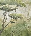 MANAUS-Blumen-Tiere-Blätter-Vögel-Fauna-Florale-Muster-FotoTapeten-Multicolor