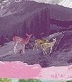 Mont-Rose-Tiere-Großmotiv-Collage-FotoTapeten-Grau-Weiß