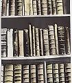 New-Antique-Books,-brown-Bücher-Moderne-Muster-Braun-Anthrazit-Creme-Hellbraun