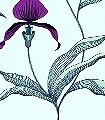 Orchid-No.-27-Blumen-Moderne-Muster-Grün-Lila-Anthrazit-mint